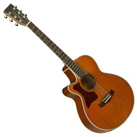 TW45NSE Electro-Acoustic Left Handed
