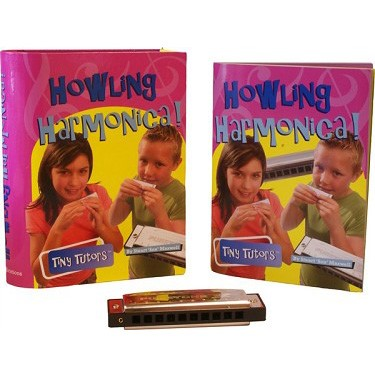Harmonica Learning Set