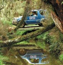 Take control with this hands on, adventure packed 4WD safari through native New Zealand forest.