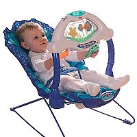 An aquatic themed bouncer which features a clear w