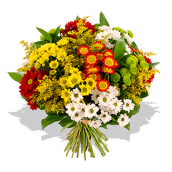 Unbranded Chrysanthemum Bouquet - flowers