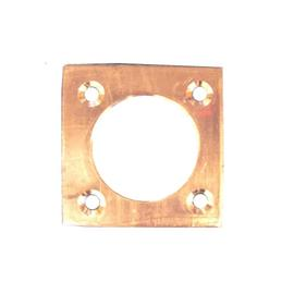 Unbranded Copper Nest Box Hole Protector