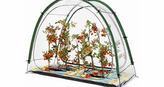 Growing your own fruit and veg has never been more popular and whatever you like to grow fruit vegetables plants or shrubs you will have probably thought about buying a greenhouse cold frame or poly tunnel at some time or other. So why havent you don