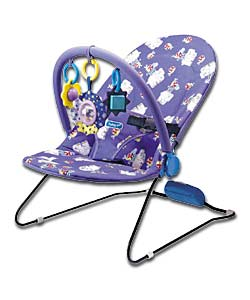 Deluxe Gentle Vibrations Bouncer.