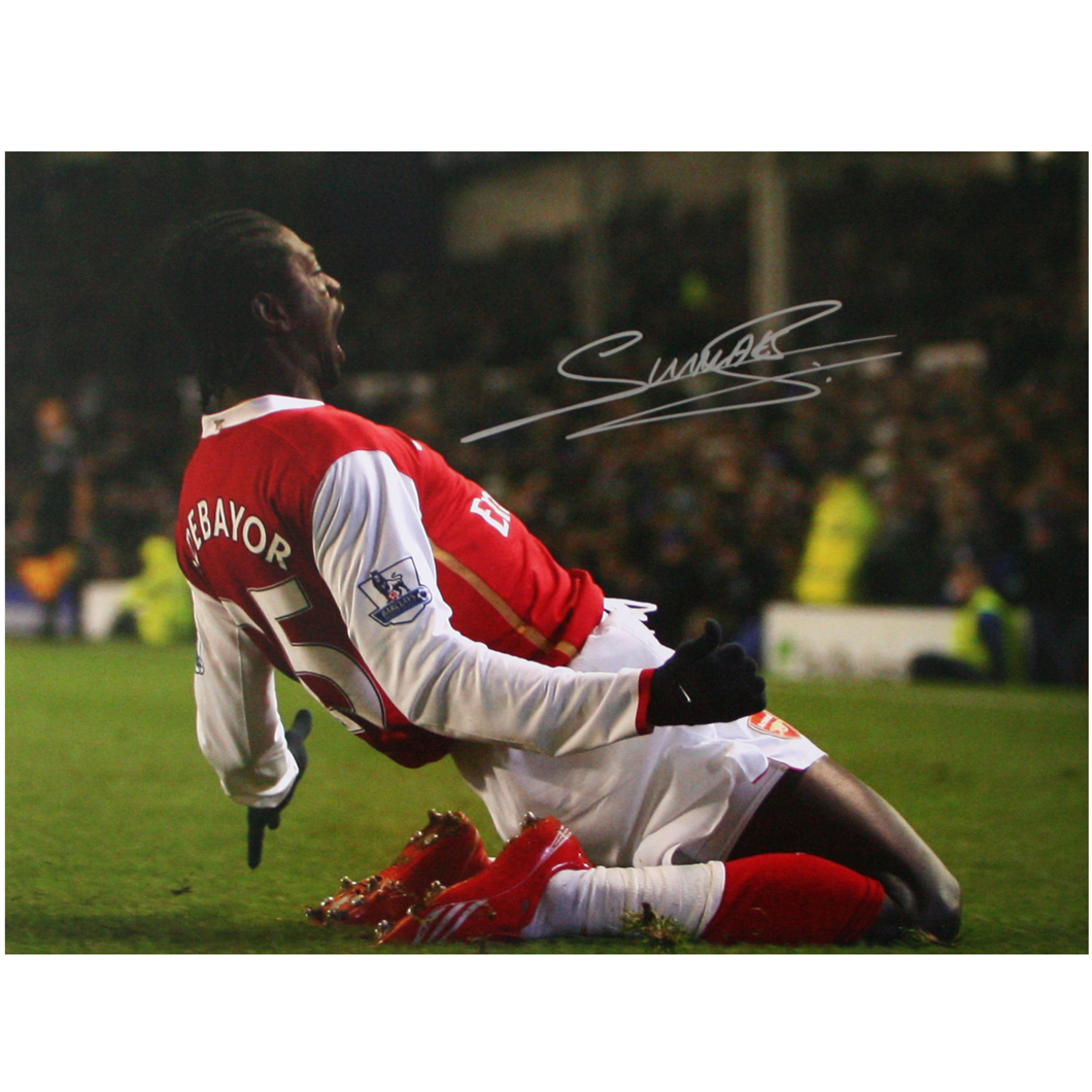 This photograph shows Emmanuel Adebayor celebrating a goal for Arsenal against Everton at Goodison P