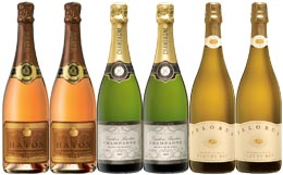 Six bottles for the price of five ... revered bubblies to pop some sparkle into your festive season.