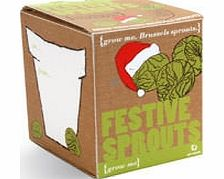 This kit contains all you need to help you cultivate your very own Brussel sprouts for your Christmas dinner this year. The satisfaction of presenting your home grown sprouts will surely make Christmas dinner that little bit more special. Location: