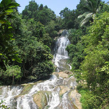 Enjoy a fabulous full day four-wheel drive adventure through the jungle of Koh Samui.