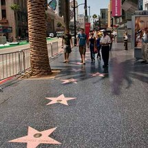 See the best of Los Angeles during this one-of-a-kind tour including visits to the Hollywood Walk of Fame, the hand and footprints at Mann™s Chinese Theatre, Beverly Hills and your choice of Venice Beach or Santa Monica.