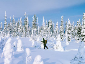Unbranded Lapland family winter adventure holiday