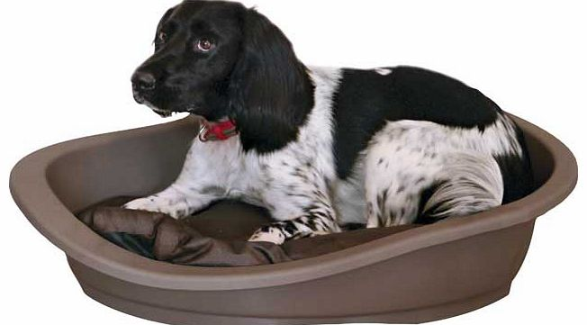 This plastic pet bed was designed with your beloved pets comfort in mind. Its hard and durable material will make them feel safe and secure and the plush internal cushion adds warmth and comfort. Plastic. Suitable for large sized dogs. Machine washab
