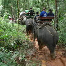 This fantastic combination tour combines a range of local activities including elephant trekking and