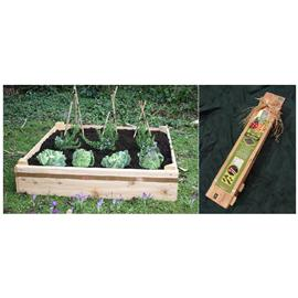 Unbranded Raised Beds- Grow Your Own- Square