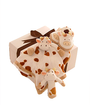 Welcome baby to the world with this set containing a cuddleblanket slippers and a rattle. This is a