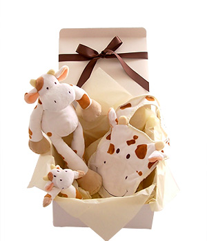 A fun-filled cow gift set for baby with an animal to cuddle a rattle to play with and a bib. The cow