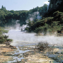 Discover the natural beauty, learn local legend and explore the geothermal wonderland that make Roto