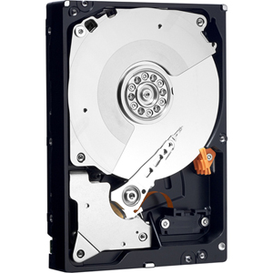 Western Digital WD2503ABYX 250 GB Internal Hard