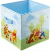 Winnie the Pooh and Tigger Storage Box