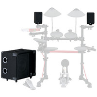 MS100DR DTX Monitor System 100W